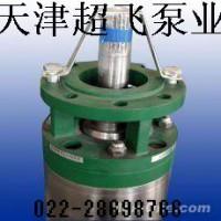 天津防腐深井潜水泵,天津热水潜水电机