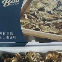 上海哪有卖贝吉拉生蚝_厦门高性价生蚝批售