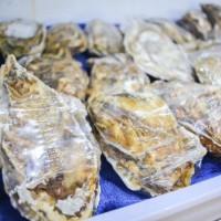 上海生蚝价格 优惠的贝拉生蚝哪里有卖