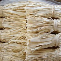 营养价值高的宽条干瓢|供应潍坊优惠的宽条干瓢
