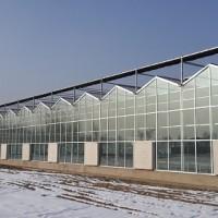 自动智能温室工程-山东实用的连栋温室