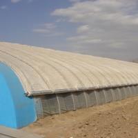 大棚保温被批发-潍坊实惠的蔬菜大棚保温被哪有卖