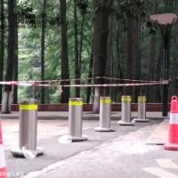 湖北路桩 加厚防撞反光路桩 隔离柱防护立柱 反光柱材质
